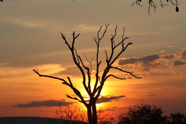 Beho Beho Sunset