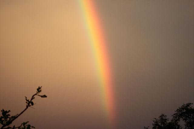 Beho Beho Rainbow